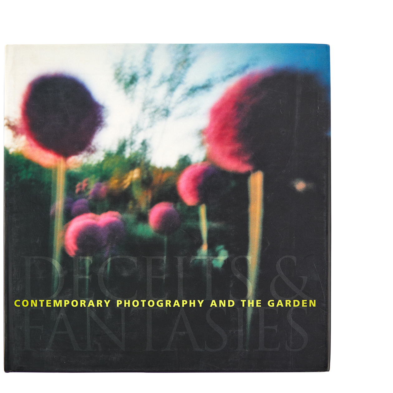 Contemporary Photography & The Garden